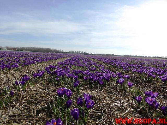 2015-03-07 Noordwijk 25 Km (90)
