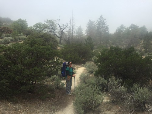 PCT: Day 14