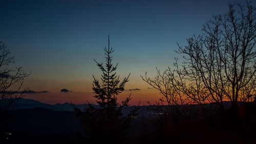 blue orange tree 35mm prime nikon dusk greece spruce coniferous ioannina papingo zagori d3100 kthma mpitou