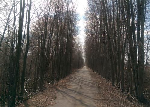 bikepath michigan trails pathway railstotrails thicket railtrail biketrail trailway macomborchardtrail armadatownship