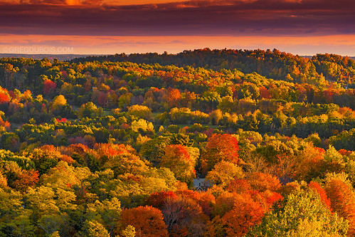 pink trees orange house fall yellow clouds rural sunrise canon landscape gold countryside fallcolor cloudy massachusetts country newengland hills fallfoliage foliage telephoto mountainview hillside rollinghills magichour goldenhour eastcoast falltrees goldenlight yellowtrees goldlight orangetrees newenglandfall merrimackvalley colorfultrees salisburymassachusetts colorfulsunrise eastcoastfall canon6d colorfulfoliage rollinghillside massachusettsfall amesburymassachusetts powwowhill newenglandphotography newenglandphotos gregdubois gregduboisphotography newenglandcountryside newenglandphotoprints amesburyfall salisburyfall merrimackvalleyfall massachusettscountryside