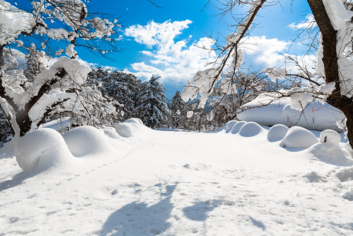 park blue winter sky white snow japan clouds canon landscape gyoen 24mm 6d 2014 yokote 24l infinitedivide jamespatrus