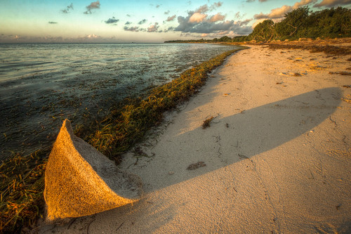 park sunrise honda keys long shadows basket state florida bahia sponge hdr