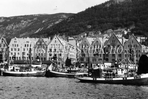 Voss Bergen distriktet (1207)
