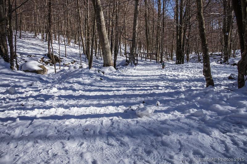 Caminando por la nieve