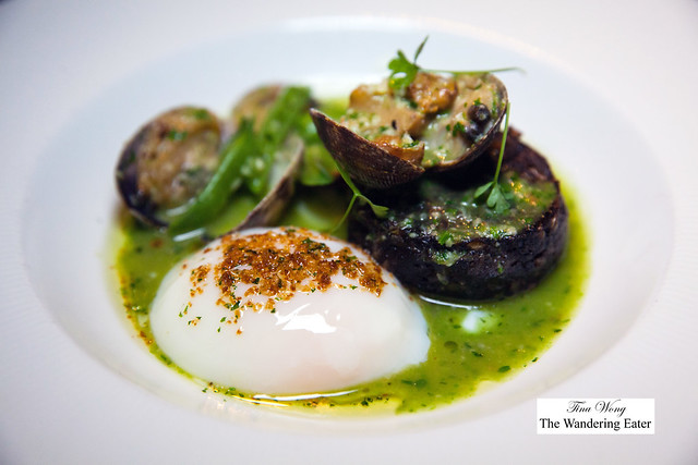 Morcilla blood sausage, poached organic egg, clams, Albariño, guindilla pepper, parsley broth