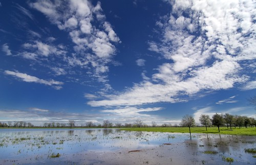 reflection water clouds landscape spring texas wetland fortbend fortbendcounty fortbendcountytexas