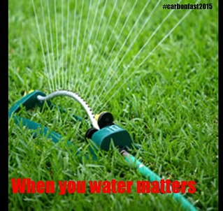 sprinkler Fri   by greenanglicans