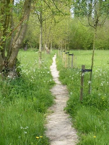 Buurtweg naast bos van Marpingen_