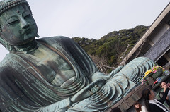 trying to fit the Great Buddha into frame