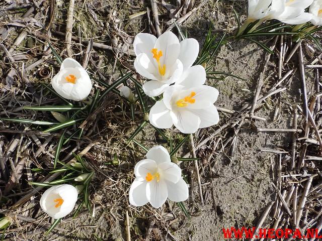 2015-03-07 Noordwijk 25 Km (93)