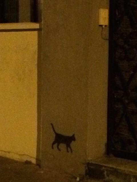 La nuit tous les chats sont... noirs