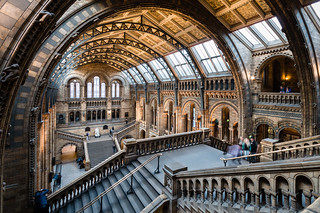 Natural History Museum - Stairs | by Mr Moss