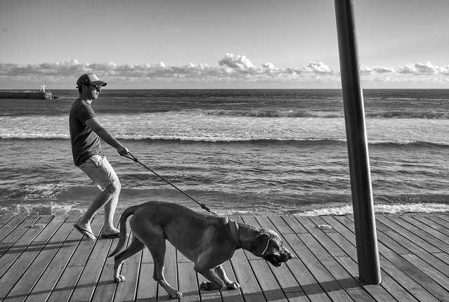 Reunion Island, 2014.