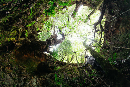 Chingwe's Hole | by Matt in Malawi