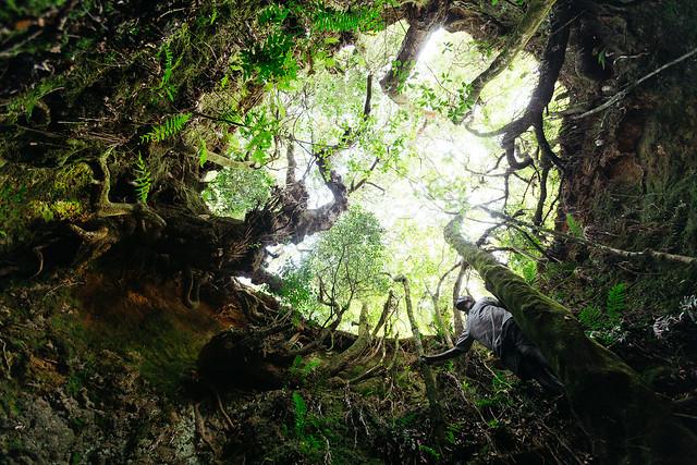 Chingwe's Hole
