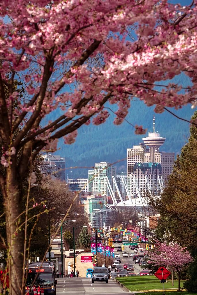 Cambie Street In Spring In Vancouver Bc Canada