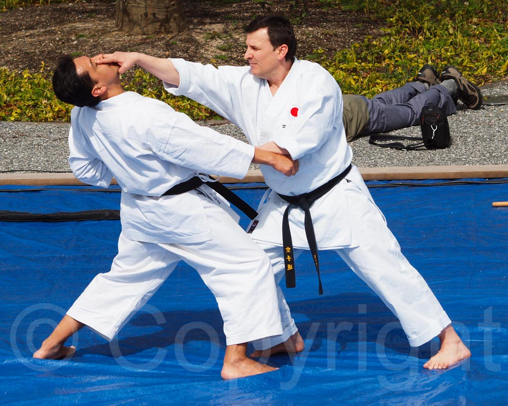 RESOBOX Iaido & Karate Performance, 2013 Roosevelt Island