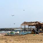 01 Viajefilos en Sri Lanka. Negombo 16