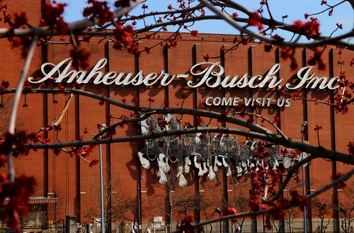 St. Louis roots. Anheuser-Busch | by David Yahl