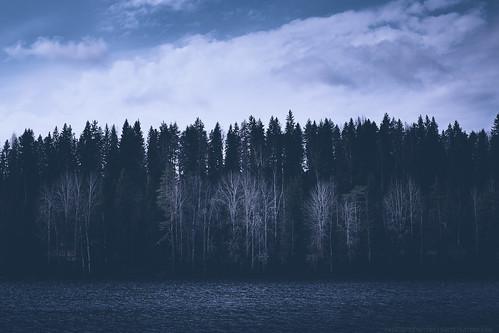 atmosphericmood cloudsky atmostpheric barren bodyofwater clouds darkness fineart finland gloomy lake landscape mystery nature spring trees water jyväskylä köhniönjärvi フィンランド 湖 春 闇 雲 森 自然