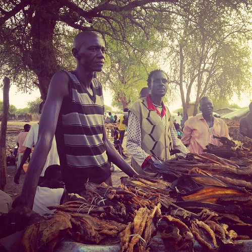 Fish seller, Lankien, South Sudan