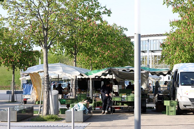 Rieselfeld market