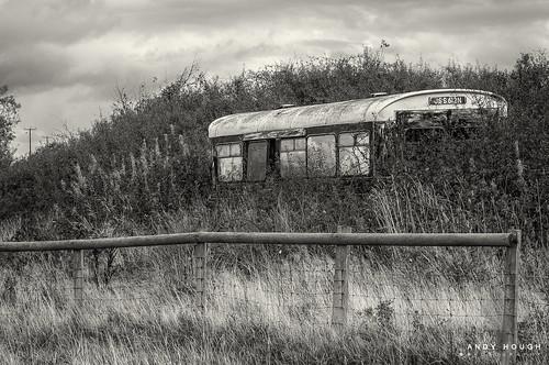 old bus abandoned monochrome wales fence blackwhite unitedkingdom decay sony historic vehicle a77 aberaeron engulfed sonyalpha andyhough slta77 andyhoughphotography