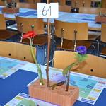 Turnerchränzli 2015 - Freitag