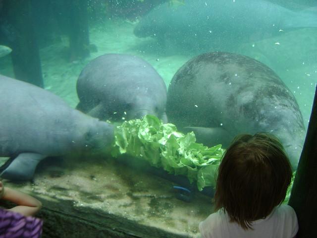 Columbus Ohio Zoo