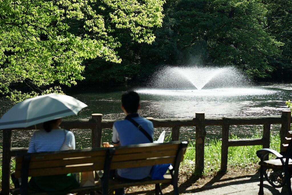 井の頭公園_17