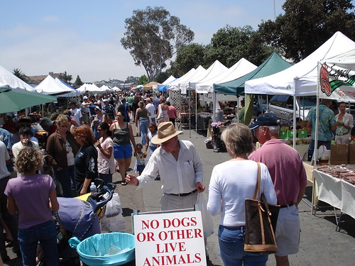 Hillcrest Farmers' Market | by hober