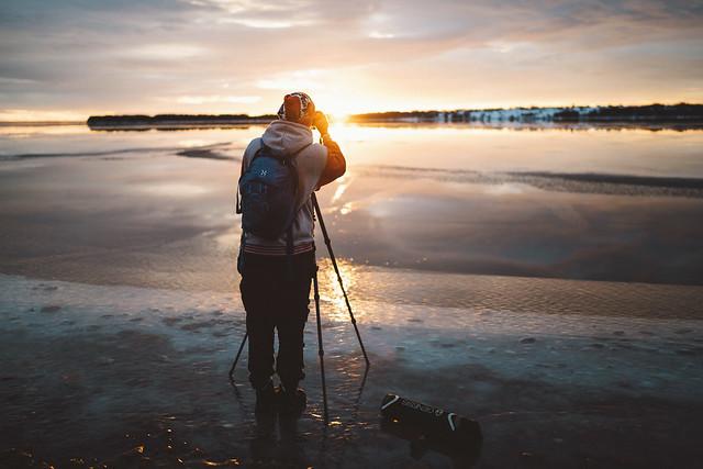 Martin catching todays sunset