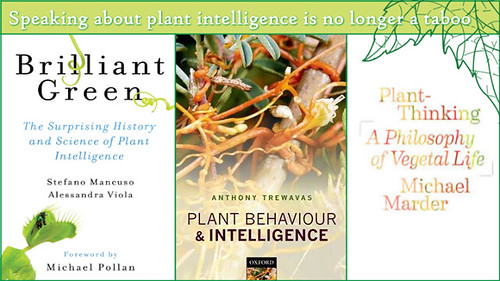 """So let's talk about plants—wondrous beings upon which life itself depends! Where do begin? Plant Perception, LINV """"International Laboratory of Plant Neurobiology"""""""
