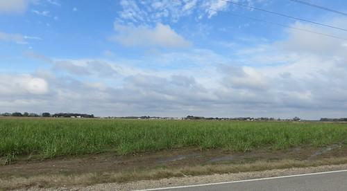 louisiana la landscapes iberiaparish northamerica unitedstates us