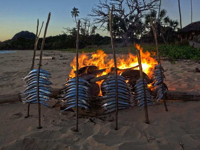 Madagascar9-068.jpg