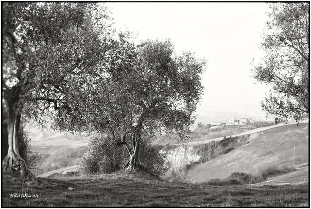 Crete Senesi_Leica M4
