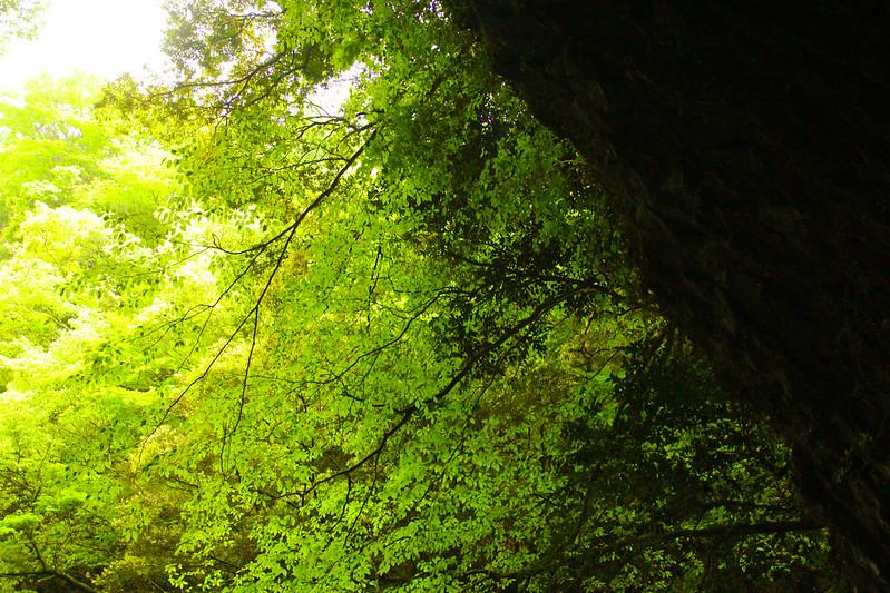 2014-05-05_01496_九州登山旅行.jpg