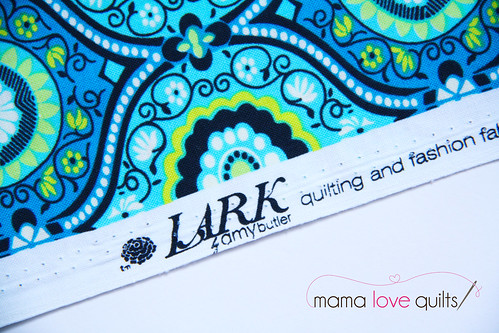 Lark fabric_Amy Butler | by Mama Love Quilts (Nicole)