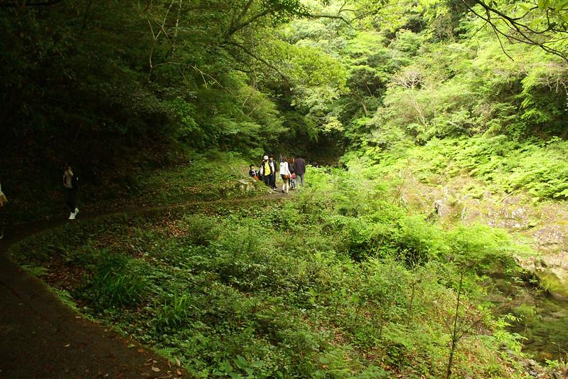 2014-05-05_01480_九州登山旅行.jpg