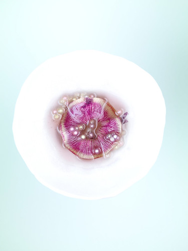 perles | by studio mixture