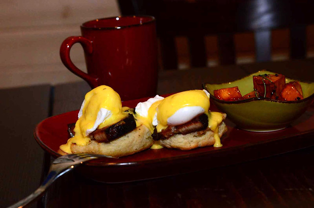 Southern Benedict  $11