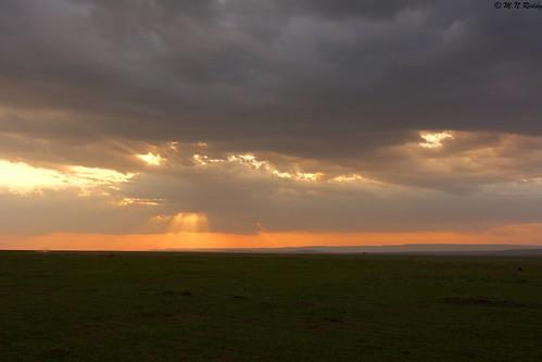silhouette africanwildlife masaimaranationalpark nikond4s eveningsunsettingcolours