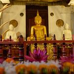 09 Viajefilos en Sri Lanka. Kandy 05