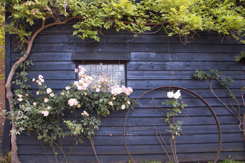 Window Manningtree Circular