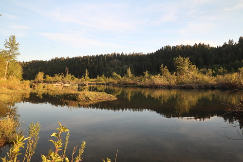 park canada calgary river alberta bow edworthy