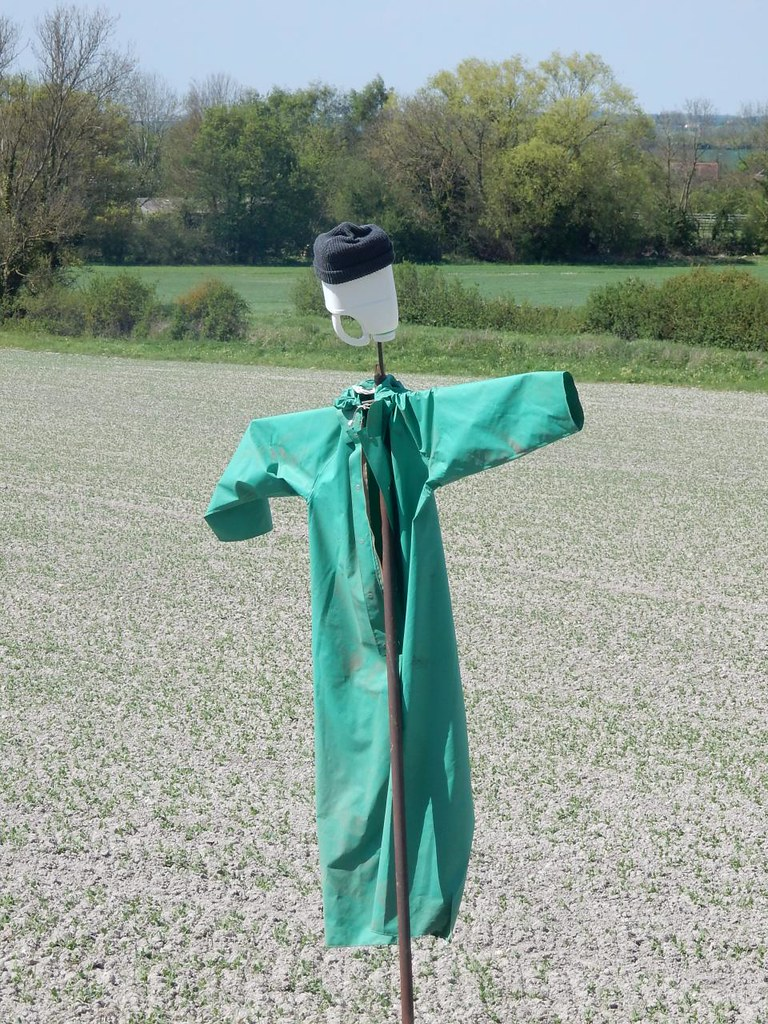 Which way did they go? Baldock Circular: Minimalist scarecrow