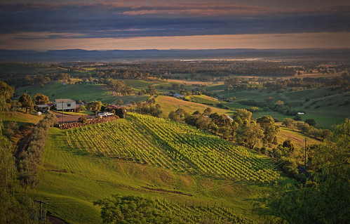 Hunter Valley winery | by Kevin Rheese