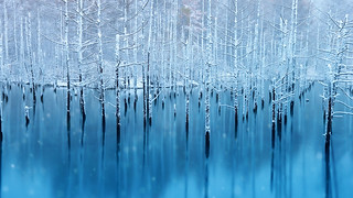 青い池   by hiroshima munetaka