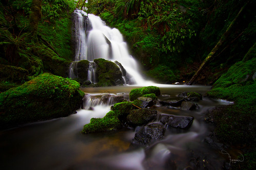 longexposure green water creek canon waterfall stream wideangle tokina hidden le lee lush ferns washingtonstate pnw gem t4i 10stop 1riverat matthewreichel